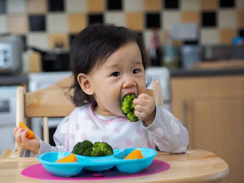 penuhi kebutuhan nutrisi anak
